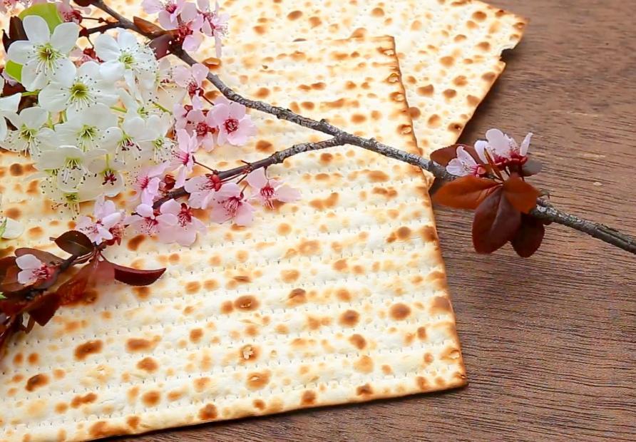 Passover greetings university of sarajevo passover greetings m4hsunfo